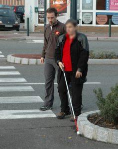la demande de chiens guides et le rôle de l'instructeur en locomotion