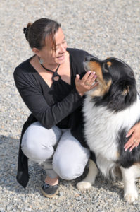 la demande de chiens guides et le rôle de l'éducateur