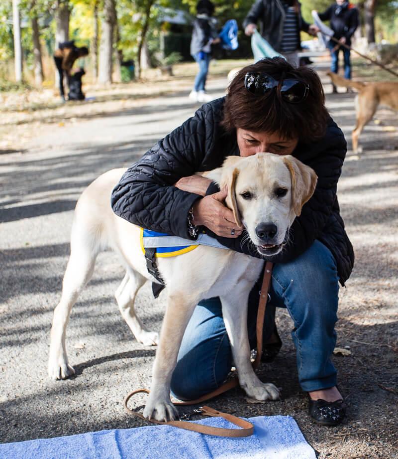 une famille d'accueil calinant son chien, labrador sable