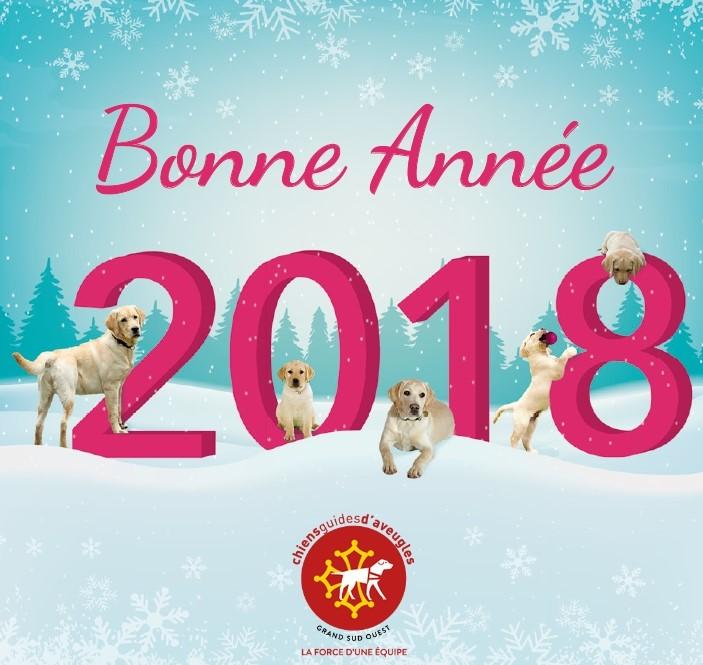 carte de voeux : bonne année 2018