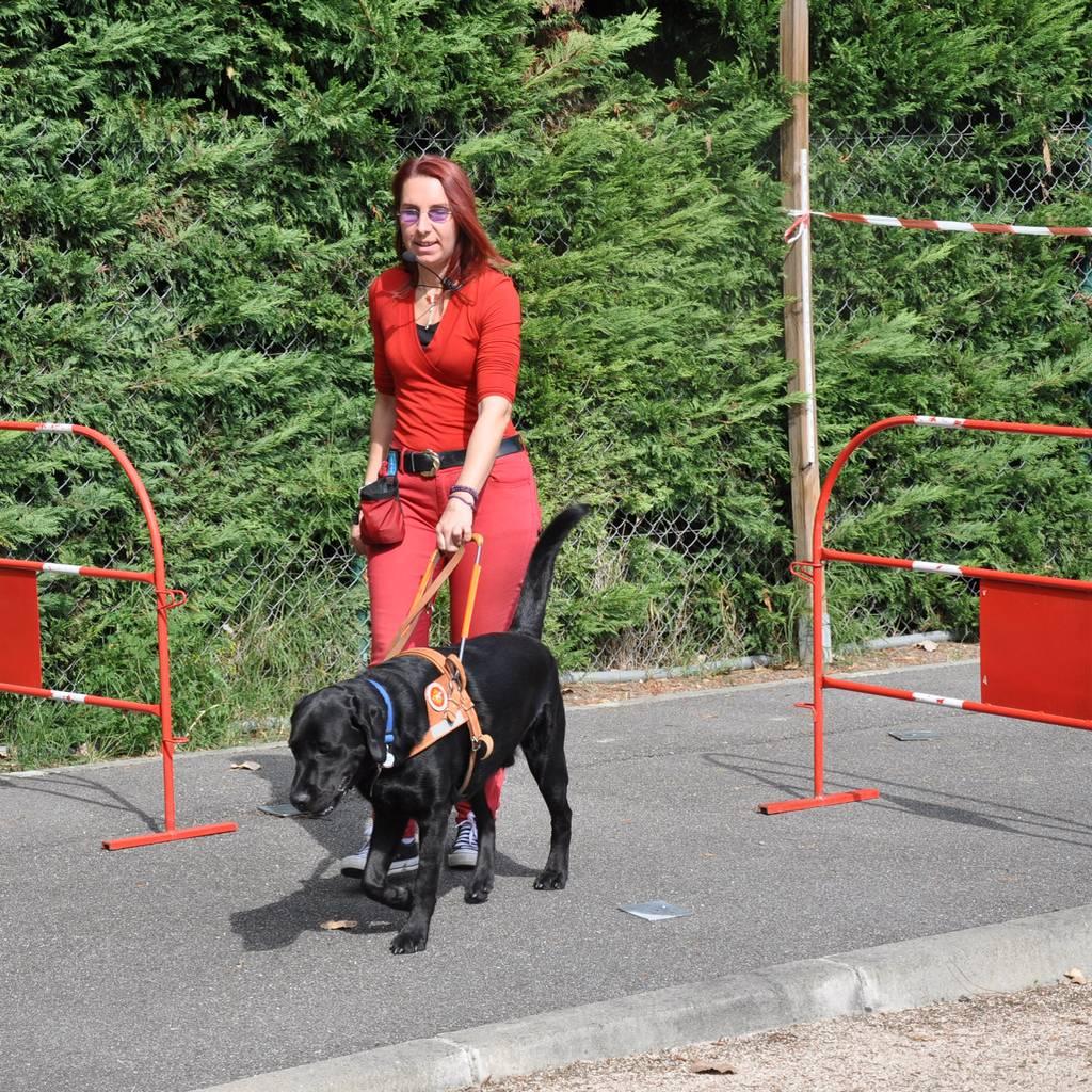 Candy avec son chien guide Haïko est sur la piste de travail de l'Association. Ils effectuent une série de contournement d'obstacles.