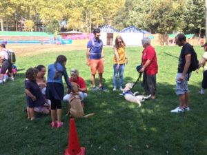 Les familles d'accueil répondent aux questions du public tandis que les chiens sont couchés dans l'herbe et se font caresser