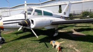 Ohara en longe s'approche d'un avion à hélices.