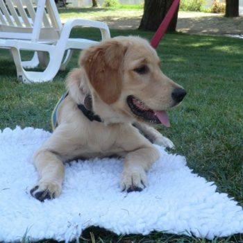 Ohara lors d'un exercice consistant à rester couchée, sur son tapis.