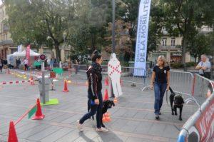 Deux éducatrices et leur chien en formation réalisent le parcours de démonstration