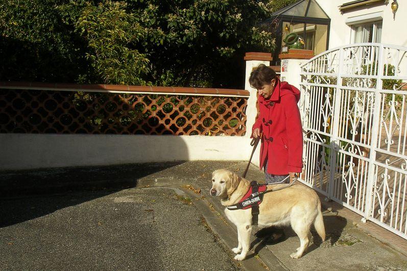 Delhia et Monique sont devant le portail d'entrée de la maison. Elles s'apprêtent à descendre du trottoir sur la chaussée. Delhia est arrêtée pour marquer le trottoir.