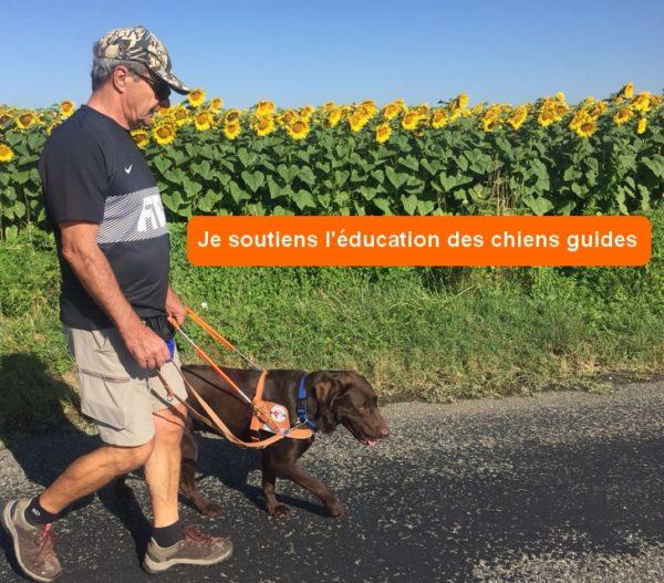 Mambo et Guy en randonnée devant un champ de tournesol.