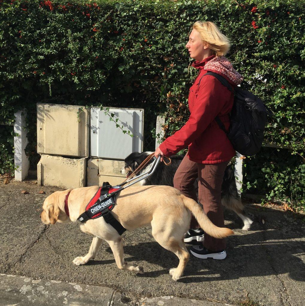 Peggy en déplacement avec Nobelle qui la guide et Guess en promenade