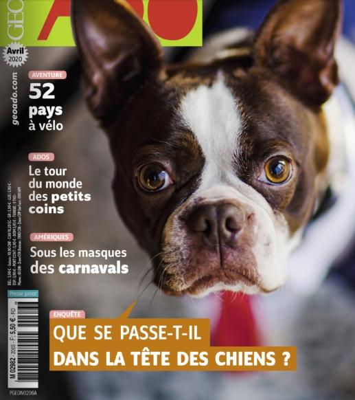 Couverture de GéoAdo d'avril 2020 avec un chien en gros plan et le titre du dossier Que se passe-t-il dans la tête des chiens