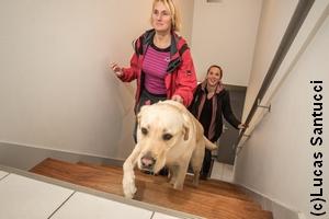Peggy guidée par Nobelle dans un escalier, suivies toutes deux de Stéphanie, éducatrice de Nobelle