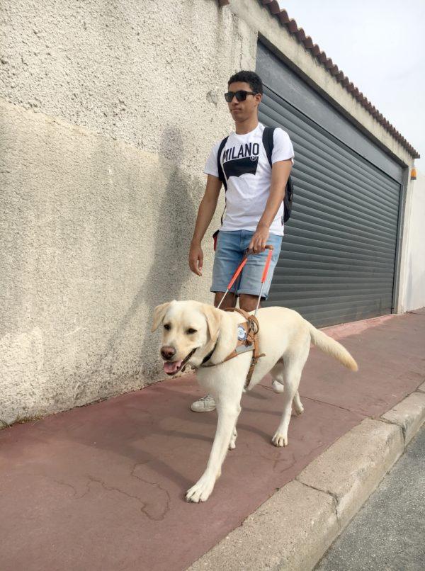 Mr Mazoul et Nelson marchant sur le trottoir