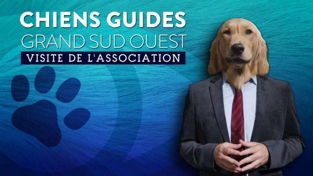 Prisco, notre chien animateur porte un costume et une cravate. Il est prêt à commenter la visite de nos locaux