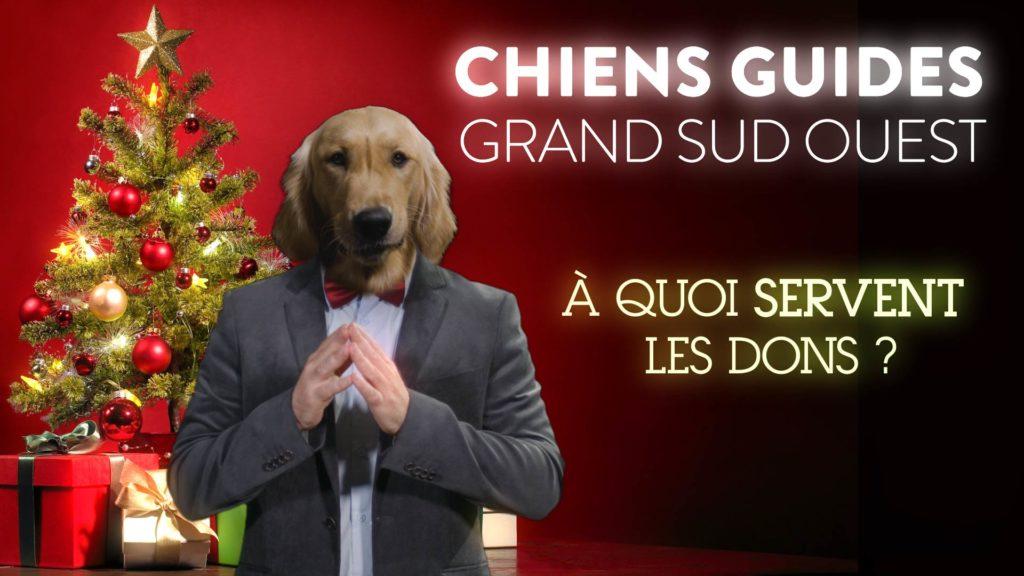 """Prisco, notre animateur chien guide en costume, est devant un sapin de Noël. Il présente la vidéo """"à quoi servent vos dons ?"""""""