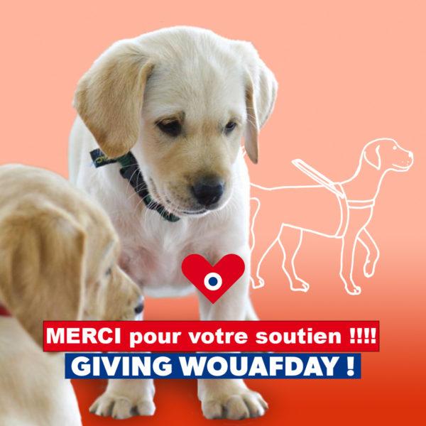 """photo chiots avec le texte suivant """"merci pour votre soutien GivingWouafday"""""""