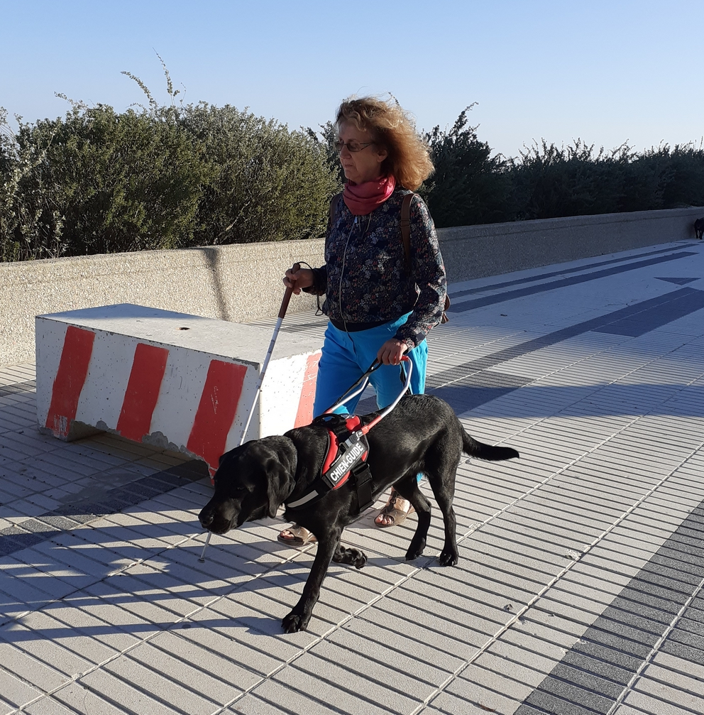 Madame Paugois et Oseki marchant sur le trottoir et contournant un banc en ciment