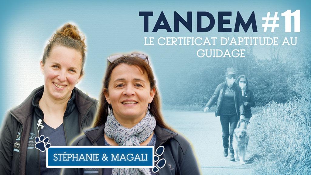 vignette de la vidéo du certificat d'aptitude avec la photo de Stéphanie, Magali et Pipa
