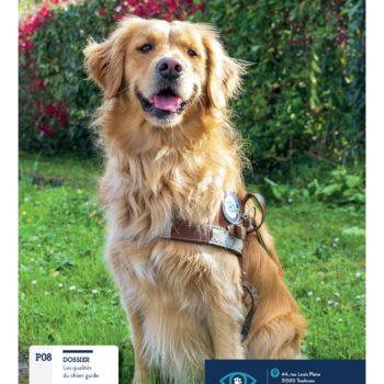 couverture du Guide n°47 : avec en photo PIPA, golden femelle assise dans l'herbe et portant son harnais de guidage